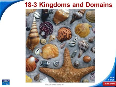 End Show Slide 1 of 28 Copyright Pearson Prentice Hall 18-3 Kingdoms and Domains.