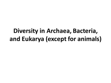 Diversity in Archaea, Bacteria, and Eukarya (except for animals)