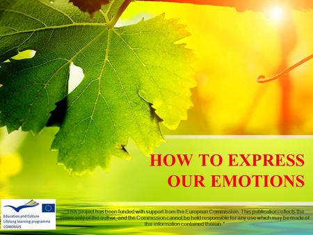 "HOW TO EXPRESS OUR EMOTIONS ""This project has been funded with support from the European Commission. This publication reflects the views only of the author,"
