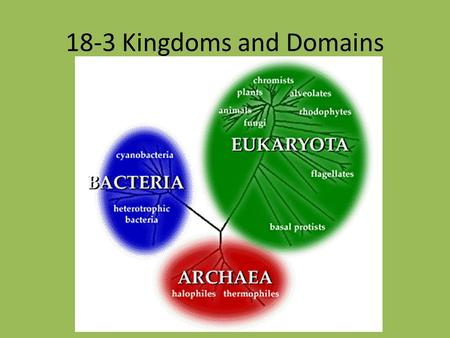 18-3 Kingdoms and Domains. As biologists learned more about the natural world, it became apparent that Linnaeus's 2-kingdom system was too simple. Today,