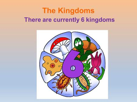 The Kingdoms There are currently 6 kingdoms. Classification into a kingdom is based on certain criteria - Number of cells (unicellular or multi-cell ular)