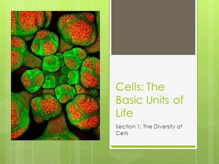 Cells: The Basic Units of Life Section 1: The Diversity of Cells.