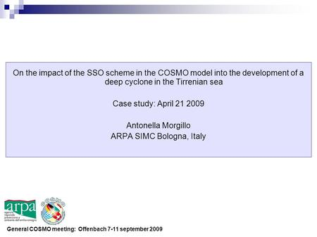 On the impact of the SSO scheme in the COSMO model into the development of a deep cyclone in the Tirrenian sea Case study: April 21 2009 Antonella Morgillo.
