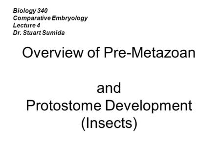 Overview of Pre-Metazoan and Protostome Development (Insects)