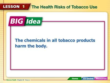 The chemicals in all tobacco products harm the body.