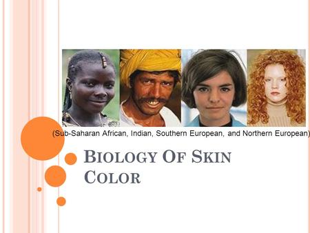 B IOLOGY O F S KIN C OLOR (Sub-Saharan African, Indian, Southern European, and Northern European)