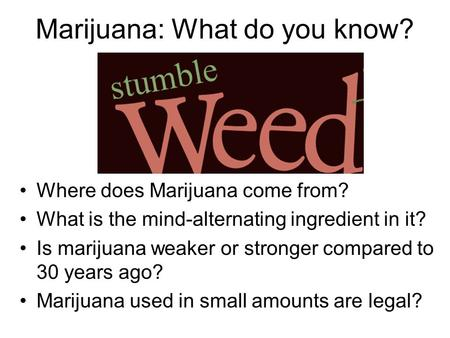 Marijuana: What do you know? Where does Marijuana come from? What is the mind-alternating ingredient in it? Is marijuana weaker or stronger compared to.