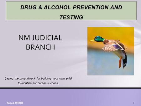 Laying the groundwork for building your own solid foundation for career success. NM JUDICIAL BRANCH Revised: 8/27/2015 1 DRUG & ALCOHOL PREVENTION AND.