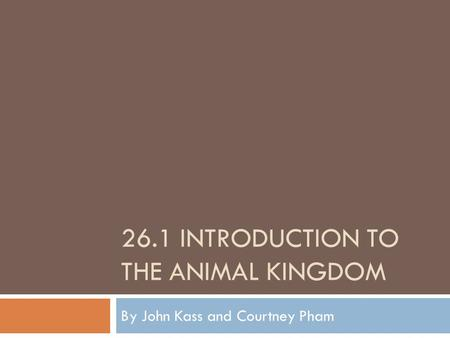26.1 INTRODUCTION TO THE ANIMAL KINGDOM By John Kass and Courtney Pham.