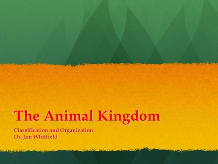 The Animal Kingdom Classification and Organization Dr. Jim Whitfield.