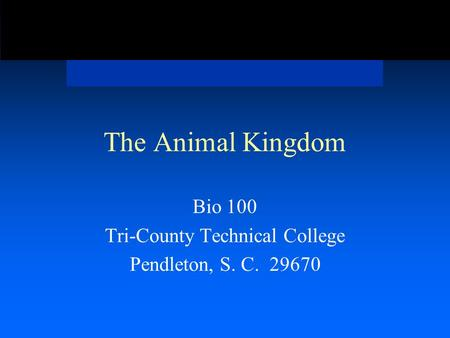 The Animal Kingdom Bio 100 Tri-County Technical College Pendleton, S. C. 29670.