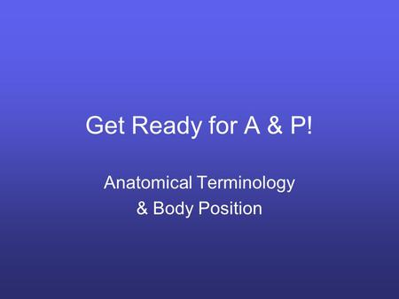 Anatomical Terminology & Body Position