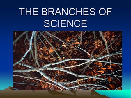 THE BRANCHES OF SCIENCE. NATURAL SCIENCE Natural Science Physical Sciences Physics Chemistry Earth and Space Science GeologyAstronomy MeterologyOceanography.