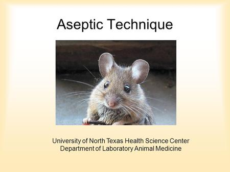 Aseptic Technique University of North Texas Health Science Center