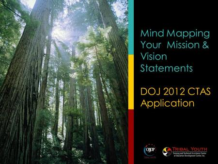 Mind Mapping Your Mission & Vision Statements DOJ 2012 CTAS Application.