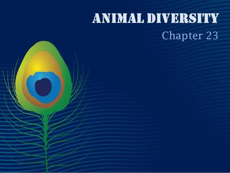 Animal Diversity Chapter 23. animal characteristics All animals share a unique set of derived characteristics. Animal cells are supported by collagen.