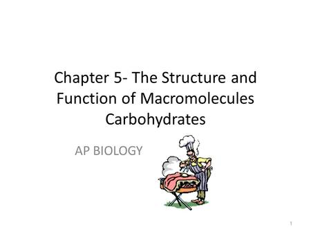 1 Chapter 5- The Structure and Function of Macromolecules Carbohydrates AP BIOLOGY.