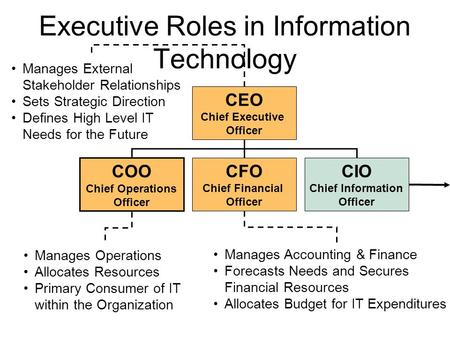 Executive Roles in Information Technology