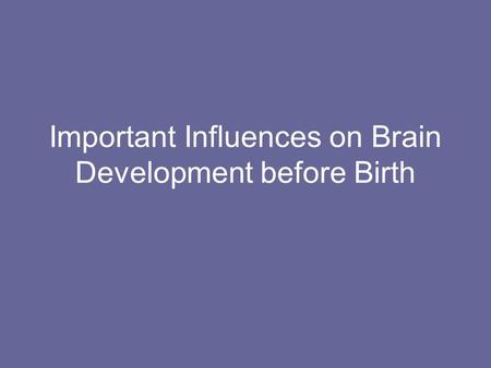 Important Influences on Brain Development before Birth