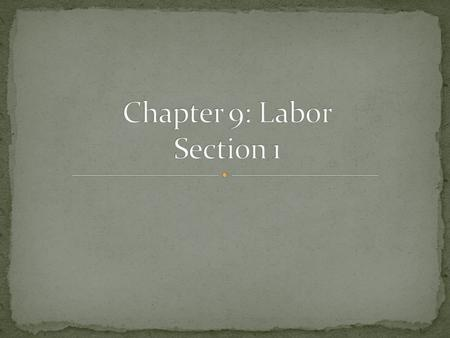 Chapter 9: Labor Section 1