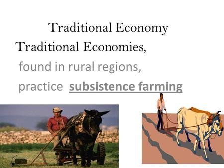 Traditional Economy Traditional Economies, found in rural regions, practice subsistence farming.