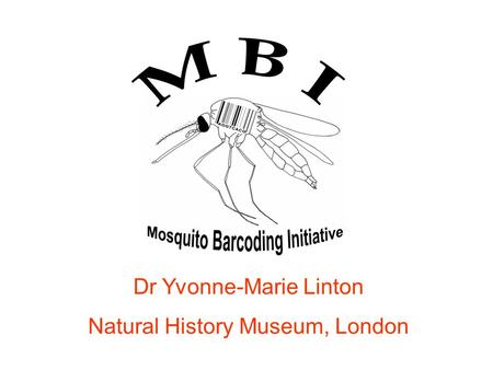 Dr Yvonne-Marie Linton Natural History Museum, London.