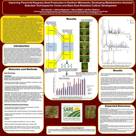 Improving Perennial Ryegrass Seed Production in Northern Minnesota: Developing Metabolomics-Assisted Selection Techniques for Crown and Stem Rust Resistant.