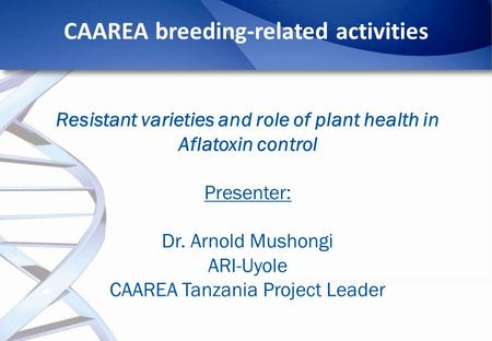 CAAREA breeding-related activities Resistant varieties and role of plant health in Aflatoxin control Presenter: Dr. Arnold Mushongi ARI-Uyole CAAREA Tanzania.
