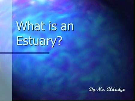 What is an Estuary? By Ms. Aldridge. An estuary is the thin zone along a coastline (such as bays, lagoons, sounds or sloughs) where freshwater systems.