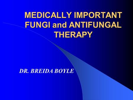 MEDICALLY IMPORTANT FUNGI and ANTIFUNGAL THERAPY DR. BREIDA BOYLE.
