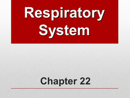 Chapter 22 Respiratory System. Human Respiratory System Functions: Works closely with circulatory system, exchanging gases between air and blood: Takes.