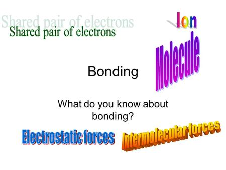 What do you know about bonding?