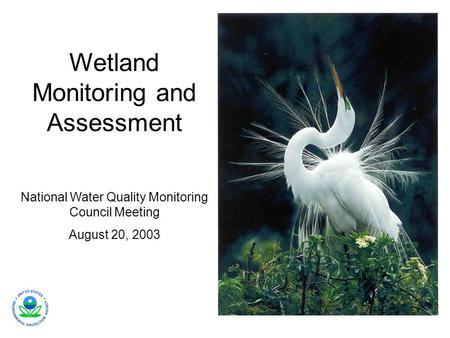Wetland Monitoring and Assessment National Water Quality Monitoring Council Meeting August 20, 2003.