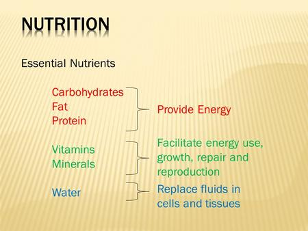 Essential Nutrients Carbohydrates Fat Protein Vitamins Minerals Water Provide Energy Facilitate energy use, growth, repair and reproduction Replace fluids.