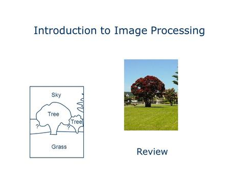 Introduction to Image Processing Grass Sky Tree ? ? Review.