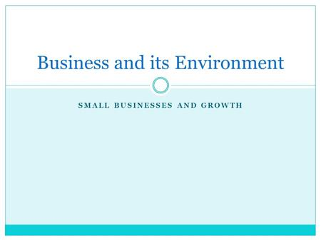 SMALL BUSINESSES AND GROWTH Business and its Environment.
