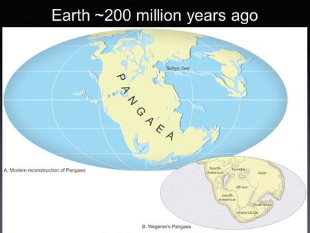 Earth ~200 million years ago. The Geologic Time Scale Based on *Fossils *Correlation Later *Calibrated with radiometric dating.