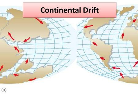Continental Drift. Key Terms Continental Drift Mid-ocean ridge Sea-floor spreading Paleomagnetism.