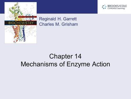 Reginald H. Garrett Charles M. Grisham Chapter 14 Mechanisms of Enzyme Action.