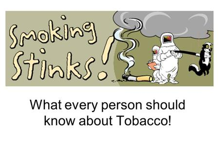 What every person should know about Tobacco!. What do you know about Smoking? The nicotine in cigarettes causes cancer? The tar in cigarettes causes addiction?