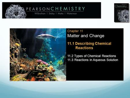 Chapter 11 Matter and Change 11.1 Describing Chemical Reactions 11.2 Types of Chemical Reactions 11.3 Reactions in Aqueous Solution.
