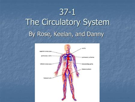 37-1 The Circulatory System By Rose, Keelan, and Danny.