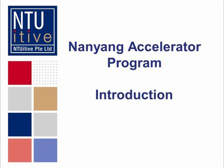 Nanyang Accelerator Program Introduction. The Agenda The mentoring team Programme objectives Mentoring team philosophy Our expectations of you.