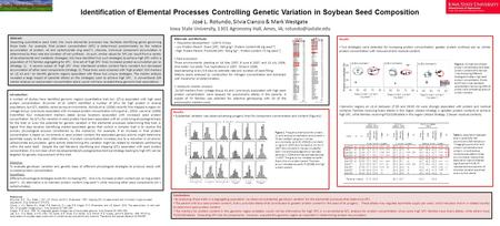 Identification of Elemental Processes Controlling Genetic Variation in Soybean Seed Composition José L. Rotundo, Silvia Cianzio & Mark Westgate Iowa State.