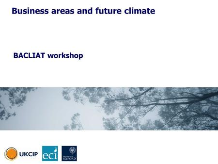 BACLIAT workshop Business areas and future climate.