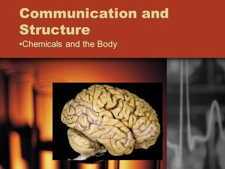 Communication and Structure Chemicals and the Body.