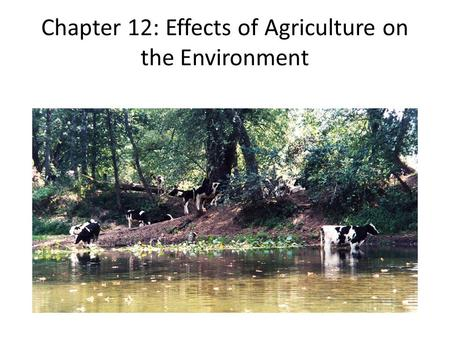 Chapter 12: Effects of Agriculture on the Environment