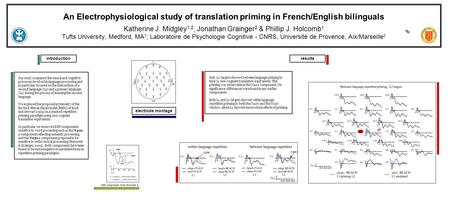 An Electrophysiological study of translation priming in French/English bilinguals Katherine J. Midgley 1,2, Jonathan Grainger 2 & Phillip J. Holcomb 1.