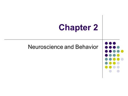 Chapter 2 Neuroscience and Behavior. Neurons and Synapses Types of Neurons SensoryMotor Interneurons.