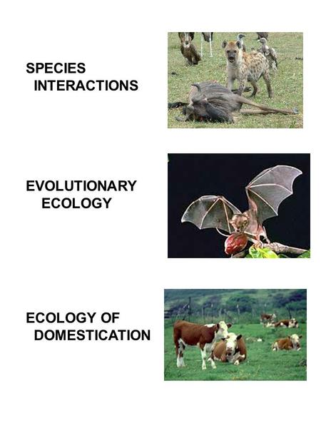 SPECIES INTERACTIONS EVOLUTIONARY ECOLOGY ECOLOGY OF DOMESTICATION.